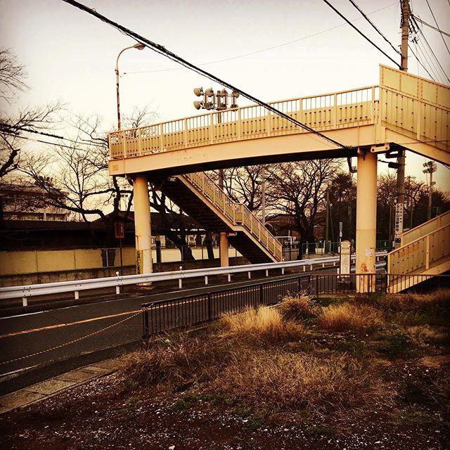 西東京エリアでの戸建て案件。探すところからの相談なので新築、リノベどちらも探る事に!新規に土地や物件を購入しての…
